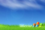 Tinkupuri_windows_vista_wallpapers